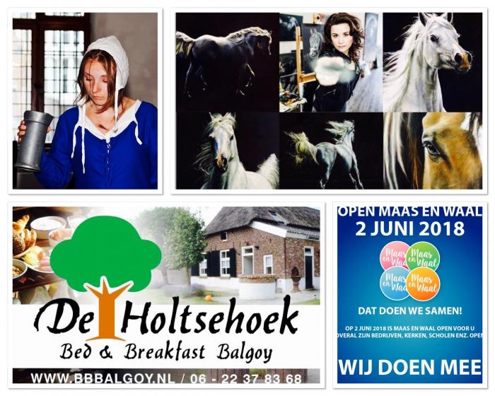 Expositie en Open dag(en) Bed en Breakfast Balgoy